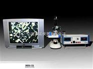 显微热分析仪WRX-1S