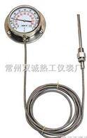 WTZ-280压力式温度计WTQ-280压力式温度计厂家