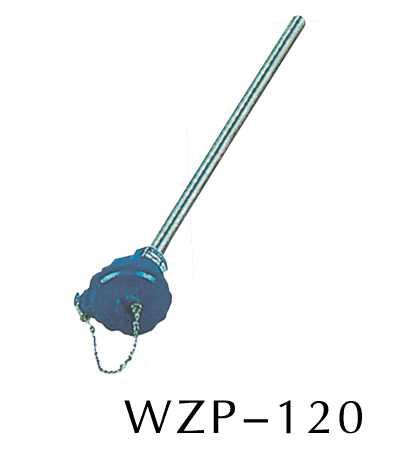 WZP-120装配热电阻(无固定装置)