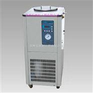 DLSB-G1010低温循环高压泵