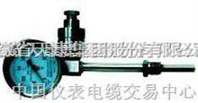 WSSE,WSSP,WSSXE,WSSXP热电阻双金属温度计