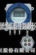 ZrO2-II型氧化鋯氧量分析儀