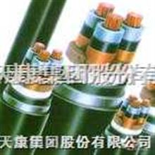 YJV,YJV22系列高压交联电力电缆