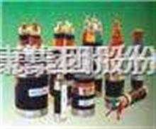 FZ輻照交聯聚乙烯絕緣控制電纜