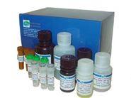 L-甘-酪二肽/甘氨酰-L-酪氨酸/Glycyl-L-Tryosine
