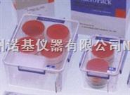 厌氧培养盒|厌氧罐