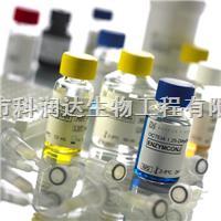 JE-IgG ELISA-乙脑病毒IgG检测试剂
