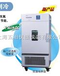 LRH-250CB低温保存箱