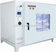 DZF-6090台式真空干燥箱 实验室真空箱 工业真空烘箱
