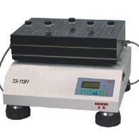 TS-113H63上海高通量平行合成仪