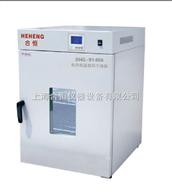 DHG-9075A上海精密型电热恒温鼓风干燥箱 精密烘干箱 精密实验室烘箱
