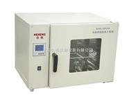 DHG-9205A上海精密型300度台式电热恒温鼓风干燥箱 实验室烘箱