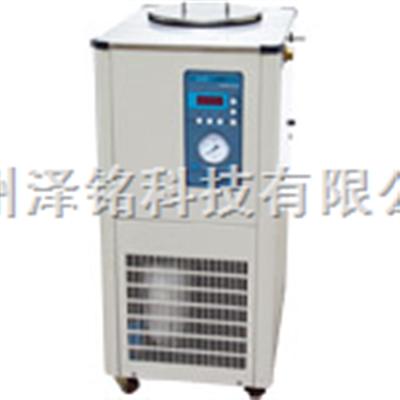 DLSB-10L/ 20L/ 30L/50L/80L/-30℃低温冷却液循环泵