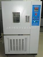 HHS0100恒定湿热试验箱 上海恒温恒湿箱