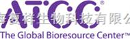 ATCC 25922 大腸埃希菌