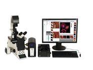 BioScope Catalyst 原子力顯微鏡/檢驗科用顯微鏡