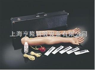 动脉注射训练手臂组合