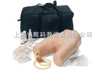 股静脉与动脉注射穿刺模型