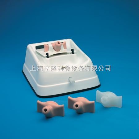 宫腔镜诊断训练模型