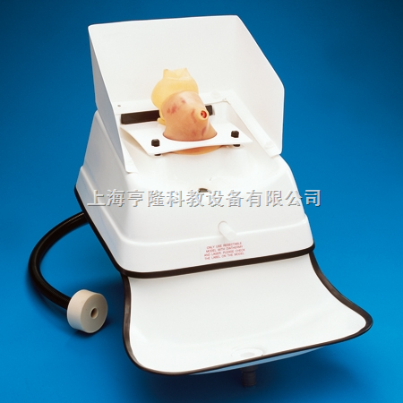 经尿道前列腺切除(TURP)训练模型