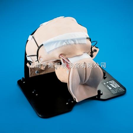 诊断性腹腔灌洗模型
