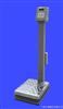 EXP系列 本安型防爆台秤安全型磅秤 上海凯士电子秤/称 厂家直销