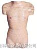 男性躯干横断断层解剖模型