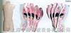 人体躯干矢状断断层解剖模型