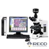 BX51/BX51M科研级正立金相显微镜