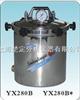 YX-280B*手提式不锈钢蒸汽灭菌器 (煤电两用)  24L