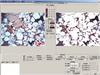 偏光分析系统简介HT-2010偏光分析系统简介HT-2010