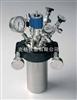 M378884高压化学合成仪/高压反应釜(JULABO)德国