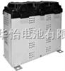 低压tbgame008电容器 - VarplusBox