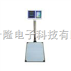 黑龙江100公斤电子秤,100公斤电子称,青岛电子秤供应