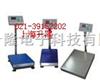 TCS-11-500电子秤-上海电子秤-嘉定电子称-上海电子称