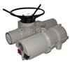 IDM35/MOJF50电动执行机构