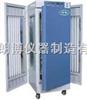QHX-300BS人工气候箱