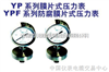 YPF系列防腐膜片式压力表