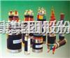 FZ辐照交联聚乙烯绝缘控制电缆