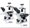 CKX31/41奥林巴斯倒置显微镜