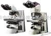 NIKON 50/55i尼康科研生物显微镜