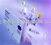 谷氨酸脱羧酶抗体(包被珠法)