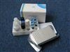 小鼠破骨细胞分化因子ELISA试剂盒