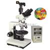 TPL-1020系列TPL-1020系列 550度高温热台偏光显微镜
