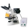 FM-22型      荧光显微镜湖北大学老师用FM-22型      荧光显微镜