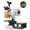 FM-7型     研究型荧光显微镜大学用经济型荧光显微镜FM-7型