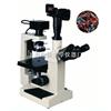 XBM-4800系列     倒置生物显微镜研究型显微镜上海大学