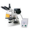 FM-22型荧光显微镜各高等院校研究FM-22型荧光显微镜研究科研清晰观察图像