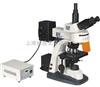 FM-50型荧光显微镜武汉细胞观察FM-50型荧光显微镜