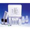 小鼠脱氢表雄酮S7ELISA试剂盒